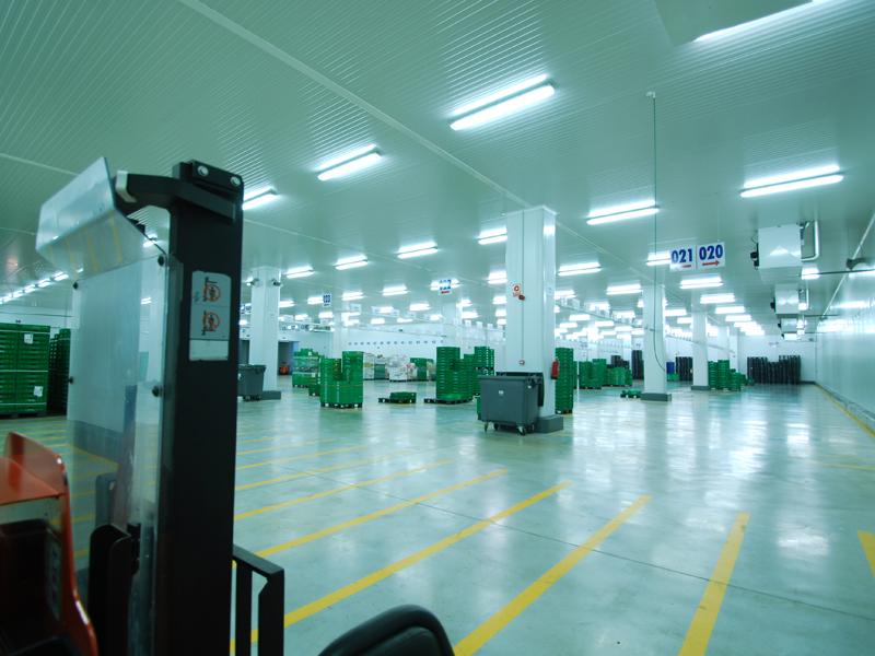 Plateforme logistique MERCADONA 11.000 m2